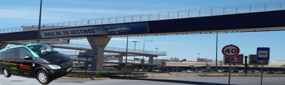 gilao tours airport transfer